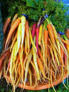 X-Ray Vision Carrots & Changing How Our Children Eat   LinkedIn