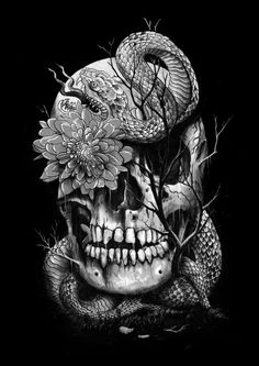 Snake and Skull Art Print