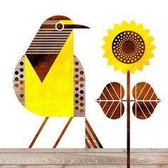 scott partridge - state bird and flower - Kansas - Western Meadowlark and Wild Sunflower