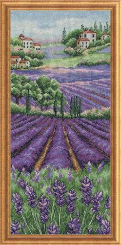 PROVENCE LAVENDER FIELDS OF COLOR