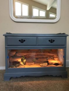 DIY Projects - Dresser - Ideas of Dresser - Dresser remodeled into reptile habitat Bartagamen Terrarium, Lizard Terrarium, Bearded Dragon Terrarium, Tortoise Terrarium, Leopard Gecko Terrarium, Bearded Dragon Vivarium, Turtle Terrarium, Tortoise Habitat, Reptile Habitat