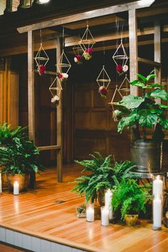 Geometric decor and potted plants