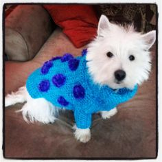 Douglas Dog Knitting Pattern : 1000+ images about Dogs in sweaters on Pinterest Dog sweaters, Sweaters and...
