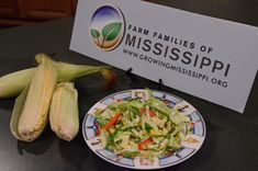 Farm Families of Mississippi: Recipes from Mississippi