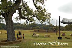 Barton Hill Farms ~ Austin, TX - R We There Yet Mom? | Family Travel for Texas and beyond...