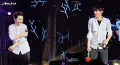 Exo Couple, Chansoo, Exo Members, Park Chanyeol, Kyungsoo, Daddy, In This Moment, Concert, Funny