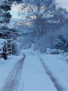 Strathconan Winter Scene
