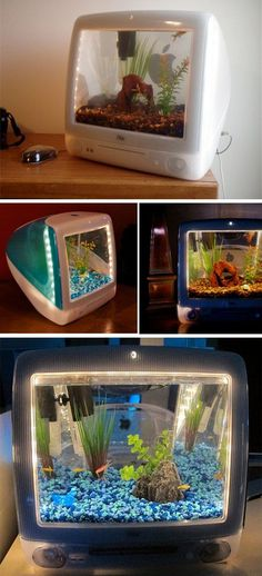 Jake Harms transforms old Apple computers into eye-catching aquariums. Recycled iMac cases are fitted with custom designed fish tanks, bright lights, and high quality filters in place of the screen. Aquariums Super, Amazing Aquariums, Tanked Aquariums, Fish Aquariums, Aquarium Original, Aquarium Terrarium, Cool Fish Tanks, Aquarium Design, Aquarium Ideas