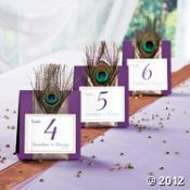Cool use of a feathers - Peacock Wedding Table Numbers