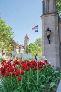Explore things to do at Indiana University in Bloomington, Indiana. Bloomington Indiana, Indiana University, Things To Do, Explore, Big, Places, Things To Make, Lugares, Exploring