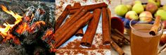 Tart Melt Combo Pack Scent Preview: Autumn Reflections (Cinnamon Stick, Firewood, Mulled Cider)