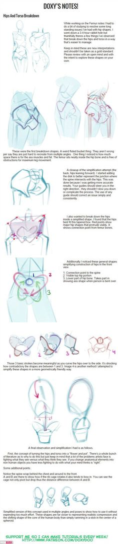 Hips and Torso Breakdown by mldoxy on DeviantArt Human Drawing Reference, Human Figure Drawing, Drawing Practice, Anatomy Reference, Art Reference, Figure Drawing Tutorial, Manga Tutorial, Anatomy Tutorial, Anatomy Drawing