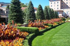Tropicanna cannas add brightness and a loose touch to the Biltmore Estate Gardens