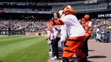 ENTERTAINMENT A day with the Detroit Tigers mascot Paws
