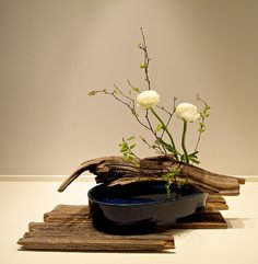 Ikebana Sogetsu style   The Nordic Lotus Ikebana Blog: Landscape Interpretations