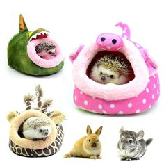 Hammock Small Animal Rat Hedgehog Squirrel House Guinea Pig Bed Nest Pad Cage FOR SALE • $7.99 • See Photos! Money Back Guarantee. Hammock Small Animal Rat Hedgehog Squirrel House Guinea Pig Bed Nest Pad Cage Description * Super warm and soft,your pet must love it!* Good feeling and comfortable for your love 192031277942