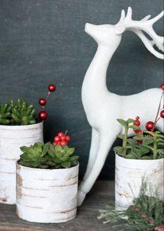 bricolages-Noel-materiaux-recycles-vases-DIY-boites-conserves-plantes-succulentes-baies-artificielles bricolages de Noël