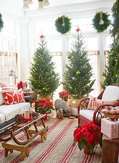 Holiday decorating & ideas - A trio of pines in baskets gives the feel of a mini forest. Minimal trimmings let the natural beauty shine. See more about this room, including resources: www.midwestliving...