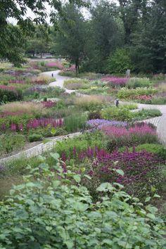 Landscape Architecture - D - Hamm - Maxipark Piet Oudolf Garden Borders, Garden Paths, Garden Landscaping, Landscaping Ideas, Prairie Planting, Prairie Garden, Amazing Gardens, Beautiful Gardens, Landscape Architecture