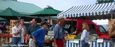 Fredericton Tourist and Visitor Tips Fredericton New Brunswick, Farmers Market, Tips, Travel, Viajes, Traveling, Trips, Tourism, Farmers' Market