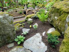 Hagtorpet: Woodland - en del av vår trädgård