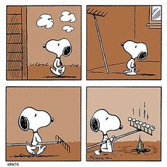 harlie Brown  hours ago More Think outside the box. Snoopy Cartoon, Snoopy Comics, Peanuts Cartoon, Peanuts Snoopy, Peanuts Comics, Images Snoopy, Snoopy Pictures, Snoopy Et Woodstock, Snoopy Love