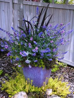 Container Gardening Ideas For Your Home - Pflanzideen Container Flowers, Container Plants, Container Gardening, Plant Containers, Pot Jardin, Deco Floral, Plantation, Garden Planters, Potted Garden