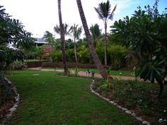 Explore coconut wireless' photos on Flickr. coconut wireless has uploaded 15880 photos to Flickr. Sidewalk, Coconut, Explore, Disney, Photos, Pictures, Side Walkway, Walkway, Walkways