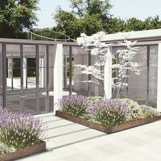 This is a #rendering for an entry #courtyard with white #dogwood trees #lavender bushes and #hydrangeas within core ten planters. The client's pup is patiently waiting at the door. Design by BCA @barnescoy_architects. In-house rendering by @Kozatch #modern #Hamptons #render_contest #architecture #rhino3d #photoshop #Panorama 2 of 3 by barnescoy_architects #instashare #sharingiscaring #love #theirsuccessisoursuccess