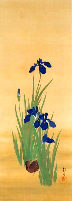 十二ヶ月花鳥図:燕子花に水鶏図(五月,先抱一,19th century,Japan
