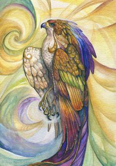 The Hawk~ My Animal Spirit guide
