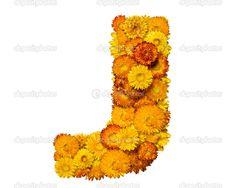 Orange & Yellow Mary Flowers, Orange Yellow, Pineapple, Fruit, Pine Apple