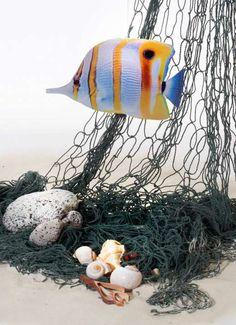 """Tropenfisch """"Pinzettfisch"""" 20x12 cm (L/H)"""