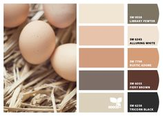 New ideas for bedroom colors paint warm design seeds Brown Color Schemes, House Color Schemes, House Colors, Design Seeds, Kitchen Paint Colors, Bedroom Paint Colors, Brown Paint, Color Palate, Color Swatches