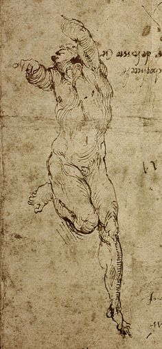 Michelangelo https://www.flickr.com/photos/78968329@N08/16352847827/in/dateposted/