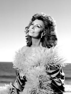 More than six decades have passed since Sophia Loren first lent her talents to the blossoming film industry. Now, she remains a lone survivor, the last precious piece of a priceless congregation that was the Golden Age of Hollywood. Hollywood Fashion, Classic Hollywood, Old Hollywood, Hollywood Style, Hollywood Glamour, Divas, Marilyn Monroe Painting, Carlo Ponti, Sophia Loren Images