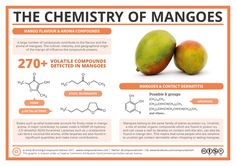 The Chemistry of Mangoes