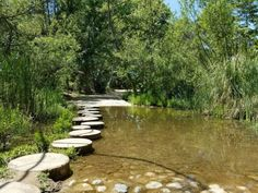 You can even skip along stepping stones on the way to the trail.