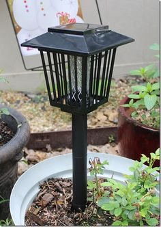 #ProductReviewParty Review: Solar-Powered Outdoor Bug Zapper / Mosquito Killer - Hang or Stick in the Ground - Dual Modes - Bug Zapper & Garden Light Function