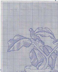 PLANETA PONTO CRUZ 2: Cebollas y Flores