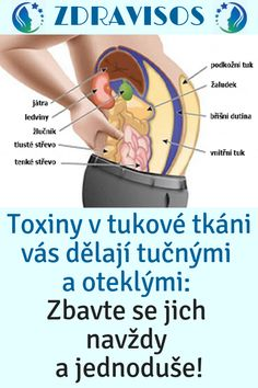 * Toxiny v tukové tkáni vás dělají tučnými a oteklými: Zbavte se jich nav. Workout Programs, Health And Beauty, Diabetes, Health Fitness, Family Guy, Healthy, Life, Facebook, Gym