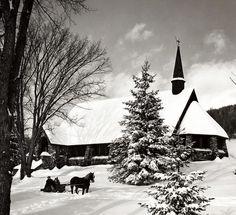 Lovely Christmas photo