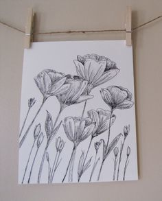 8x10 Poppies-Original Ink and Charcoal Drawing by MyImaginationInInk