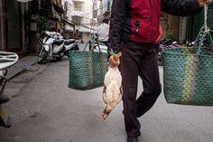 Chicken - Street Photography  Michael Bainbridge