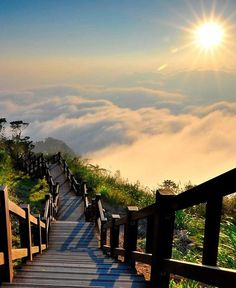 , Yushan National Park,Taiwan