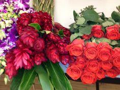 Roses + ginger - Lilia Basulto