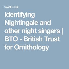 Identifying Nightingale and other night singers | BTO - British Trust for Ornithology