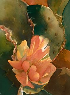 Blooming cactus - Jeanne Bonine WATERCOLOR