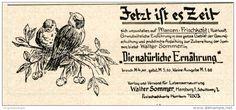 Original-Werbung/Inserat/ Anzeige 1928 - ROHKOST WALTER SOMMER HAMBURG / MOTIV VÖGEL - ca. 40 x 80 mm