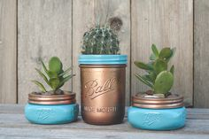 Can we get a shout out for succulents? I made some fun painted mason jar succulent planters, I going to have a sale local. I also have them all over my house too. This post contains affiliate links for Amazon and I make commission if you buy through my links in the next 24 hours. ...
